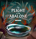 The Plight of the Abalone